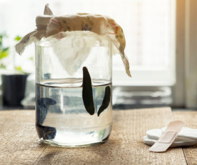 Medical Leeches In A Container With Water. Hirudotherapy.